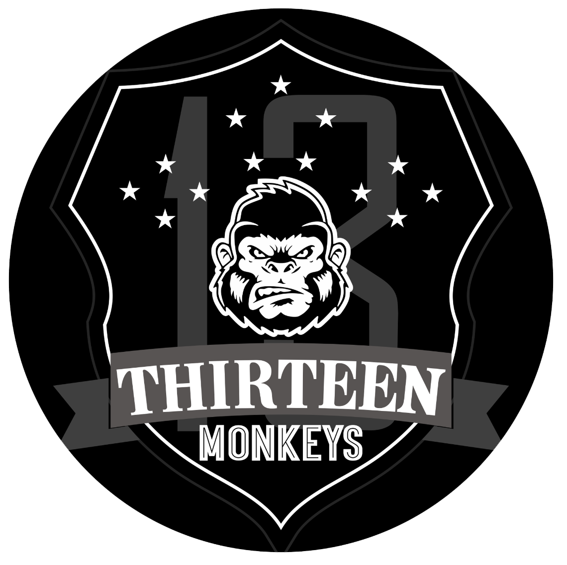 THIRTEEN MONKEYS